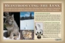 Telluride Interpretive Signs-Stonehouse Signs